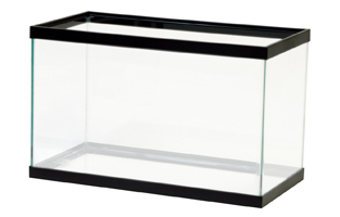 10 gallon glass aquarium