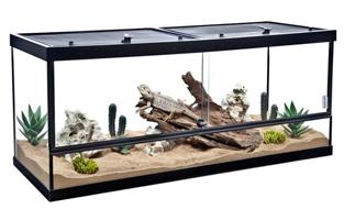 horizontal 5 foot glass vivarium