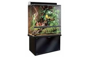 6 foot vivarium tank