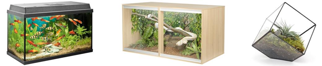aquariums vivariums and terrariums
