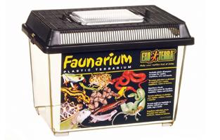 cheap vivariums