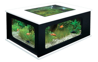Coffee Table Vivarium - Terrarium coffee table for sale