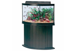 corner vivarium for fish or reptiles