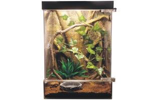 Chameleon Reptile Vivarium Kit for sale on Amazon