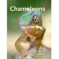 chameleons pet care book