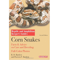 Corn Snake Vivarium - How To Create Corn Snake Terrarium
