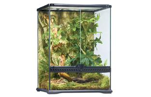 Exo Terra Rainforest Habitat Kit for Chameleons