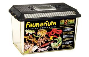 plastic snake vivarium